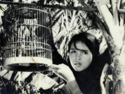Ouverture d'une Semaine du film vietnamien au Paraguay