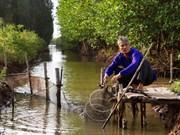L'Allemagne aide le Vietnam dans la protection des forêts