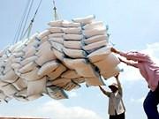3,3 millions de tonnes de riz exportés depuis janvier