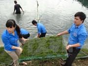 Da Nang-Saravane renforcent la coopération entre les jeunes
