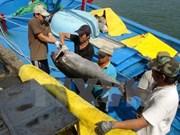 L'entreprise japonaise Hokugan s'intéresse au traitement du thon au Vietnam