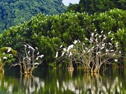 Promenade au parc ornithologique de Thung Nham