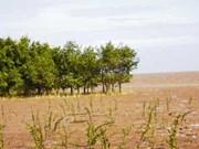 La R. de Corée aide Soc Trang dans la protection des écosystèmes