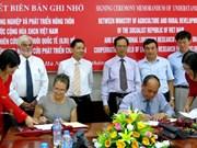 Elevage : le Vietnam coopère avec l'ILRI