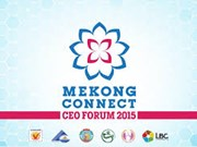 Bientôt Mekong Connect CEO Forum 2015 à Can Tho