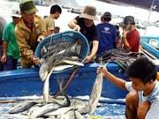1,9 million de tonnes de produits halieutiques pêchés en huit mois