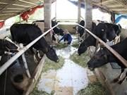 Moins d'un milliard de dollars d'importation de lait en 2015