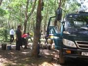 Édification de la Nouvelle ruralité chez les Êdê de Dak Lak