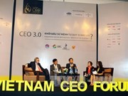 Vietnam CEO Forum 2015 : l'intégration à l'AEC en discussion