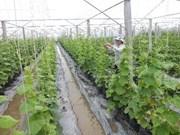 Agriculture: le Vietnam recense plus de 700 projets d'IDE
