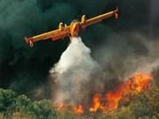 L'Indonésie verse des millions de dollars pour résoudre les incendies forestiers
