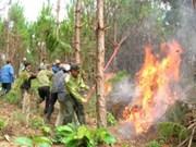 Aide pour la lutte contre les incendies de forêt
