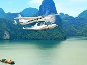 Tours d'hydravion à Ha Long: 3.500 passagers en un an