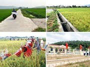 La région rurale de Quang Ninh fait peau neuve