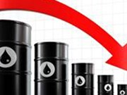 Baisse des exportations nationales de pétrole brut depuis janvier