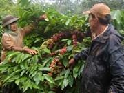 Pauvreté : le Vietnam opère un changement de politique radical