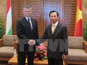 La délégation de l'Assemblée nationale hongroise en visite à Da Nang