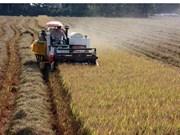 L'agriculture du delta du Mékong face aux changements climatiques