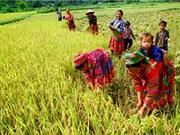 Vers une réduction multidimensionnelle de la pauvreté