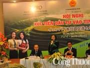 La province de Yên Bai entend attirer les investisseurs japonais
