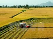 Satake veut fournir des machines agricoles modernes à Can Tho