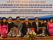 Hanoi va exporter des fruits au Japon et en Malaisie