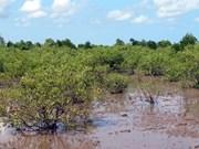 Changement climatique : aide des Pays-Bas au delta du Mékong