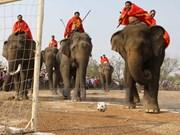 La Fête des éléphants de Dak Lak