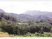 Lang Biang met à l'honneur l'écotourisme