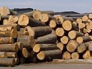 Bois : 1,66 milliard de dollars d'importations en 2015