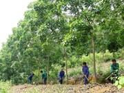 JICA aide la gestion durable des ressources naturelles
