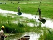 Le PM promulgue un projet pilote de développement socio-économique pour le Delta du Mékong