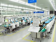 Les économistes belges s'intéressent au marché vietnamien