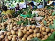Le longane et le citron de Dông Thap vont partir pour la République de Corée
