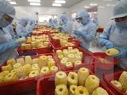 Vietnam: Une croissance d'import-export impressionnante en 2015