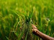 Dialogue public-privé de l'APEC sur les infrastructures d'appui à la sécurité alimentaire