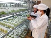 Séminaire sur la coopération Vietnam-Japon dans l'agriculture