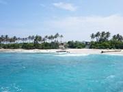 Création d'un comité de coordination pour la stratégie de gestion des zones côtières