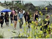 Le tourisme vietnamien cherche un nouveau souffle