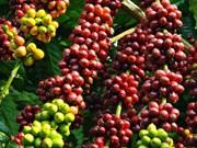 Premier semestre: 15 milliards de dollars d'exportations de produits agricoles
