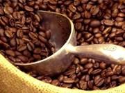 Les Algériens apprécient le café vietnamien