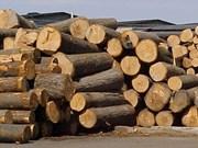 Forte baisse des importations de bois et d'ameublement