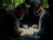 Succès d'un acte chirurgical rarissime à Hô Chi Minh-Ville