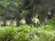 Vietnam et Laos renforcent la coopération en matière sylvicole