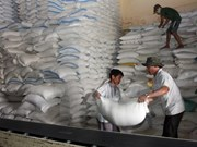 Vietnam et Thaïlande gagnent l'adjudication d'exportation de 250.000 tonnes de riz