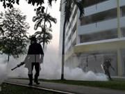 Singapour annonce 17 nouveaux cas d'infection au virus Zika
