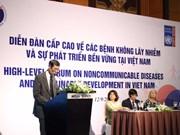 Forum de haut niveau sur les MNT au Vietnam