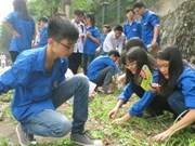 Yên Bai fait écho à la campagne «Rendre le monde plus propre»