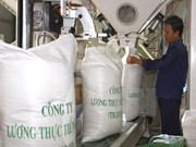 Les importateurs chinois sondent le marché du riz d'An Giang
