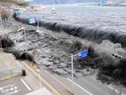 Le Vietnam présentera à une conférence internationale sur les tsunamis au Japon